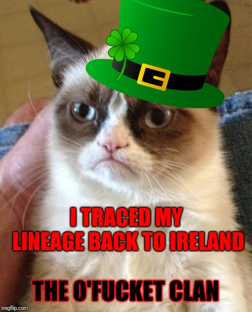Hope you have a Grumpy St. Patrick's Day! | I TRACED MY LINEAGE BACK TO IRELAND THE O'F**KET CLAN | image tagged in memes,grumpy cat,fuck it,st patrick's day,geneology,ireland | made w/ Imgflip meme maker