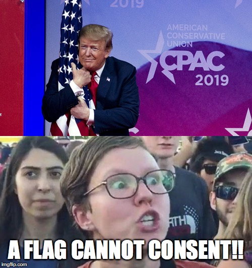 Grab her by the Stars 'n Stripes |  A FLAG CANNOT CONSENT!! | image tagged in trigger,sjw,trump,flag,consent | made w/ Imgflip meme maker
