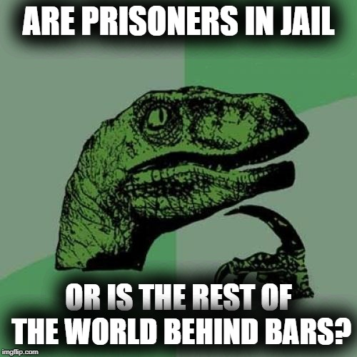 Are prisoners really free, and the rest of the world in jail? | ARE PRISONERS IN JAIL OR IS THE REST OF THE WORLD BEHIND BARS? | image tagged in memes,philosoraptor,jail,philosophy,plot twist,new world order | made w/ Imgflip meme maker
