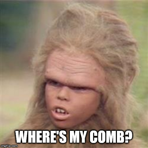 Chaka 2020 | WHERE'S MY COMB? | image tagged in chaka,hair,comb | made w/ Imgflip meme maker