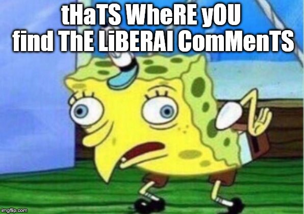 Mocking Spongebob Meme | tHaTS WheRE yOU find ThE LiBERAl ComMenTS | image tagged in memes,mocking spongebob | made w/ Imgflip meme maker