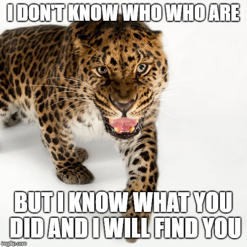 I DON'T KNOW WHO WHO ARE BUT I KNOW WHAT YOU DID AND I WILL FIND YOU | made w/ Imgflip meme maker