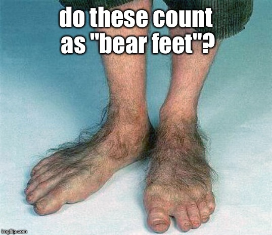 "Hairy feet  | do these count as ""bear feet""? 