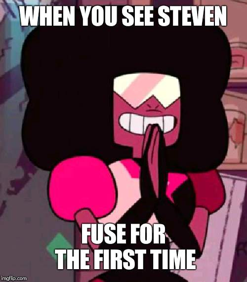 Garnet happy | WHEN YOU SEE STEVEN FUSE FOR THE FIRST TIME | image tagged in garnet happy | made w/ Imgflip meme maker