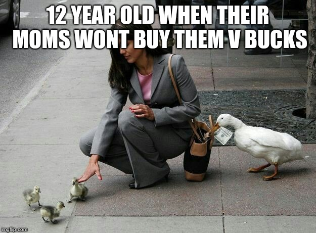 them facts though | 12 YEAR OLD WHEN THEIR MOMS WONT BUY THEM V BUCKS | image tagged in duck thief | made w/ Imgflip meme maker