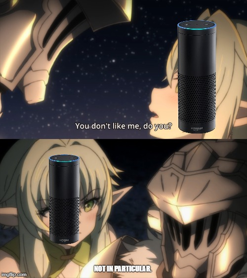 We dont like you Alexa, you lie too much | NOT IN PARTICULAR. | image tagged in funny,memes,alexa | made w/ Imgflip meme maker