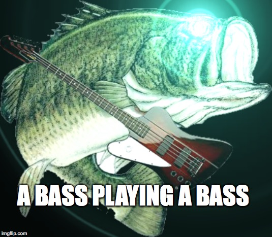 Bass | A BASS PLAYING A BASS | image tagged in bass,fish,funny,meme | made w/ Imgflip meme maker