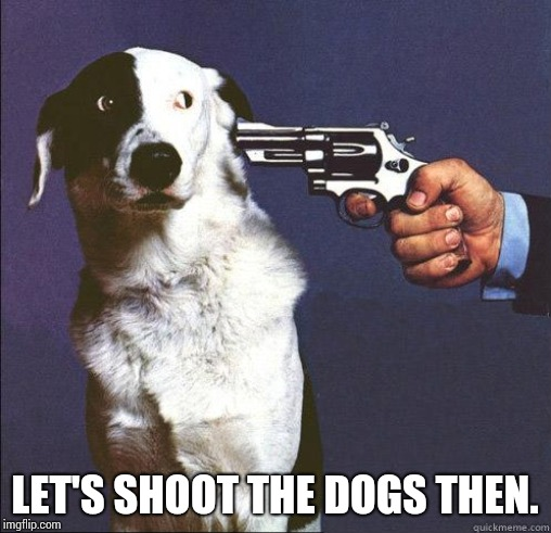 Shoot Dog | LET'S SHOOT THE DOGS THEN. | image tagged in shoot dog | made w/ Imgflip meme maker