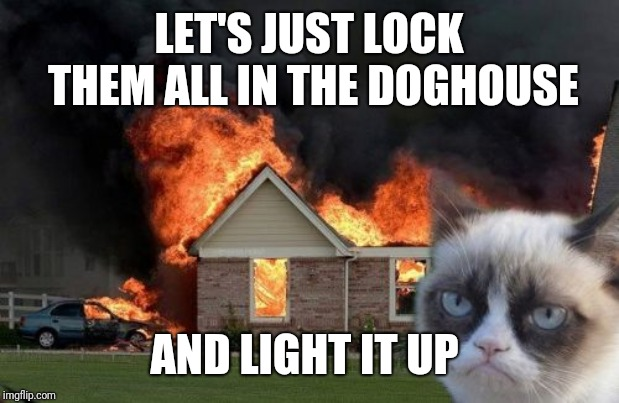 Burn Kitty Meme | LET'S JUST LOCK THEM ALL IN THE DOGHOUSE AND LIGHT IT UP | image tagged in memes,burn kitty,grumpy cat | made w/ Imgflip meme maker