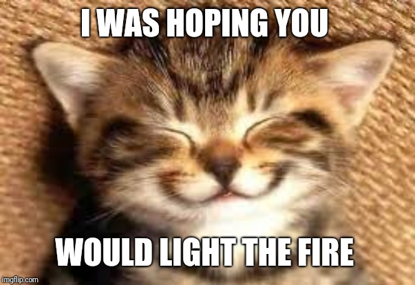 Happy cat | I WAS HOPING YOU WOULD LIGHT THE FIRE | image tagged in happy cat | made w/ Imgflip meme maker