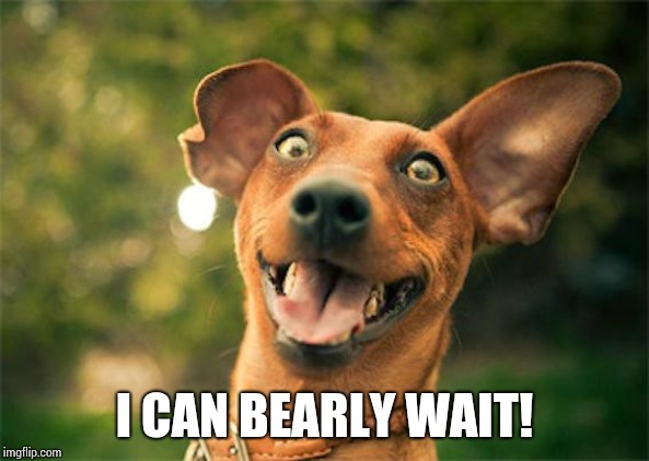 Happy dog | I CAN BEARLY WAIT! | image tagged in happy dog | made w/ Imgflip meme maker