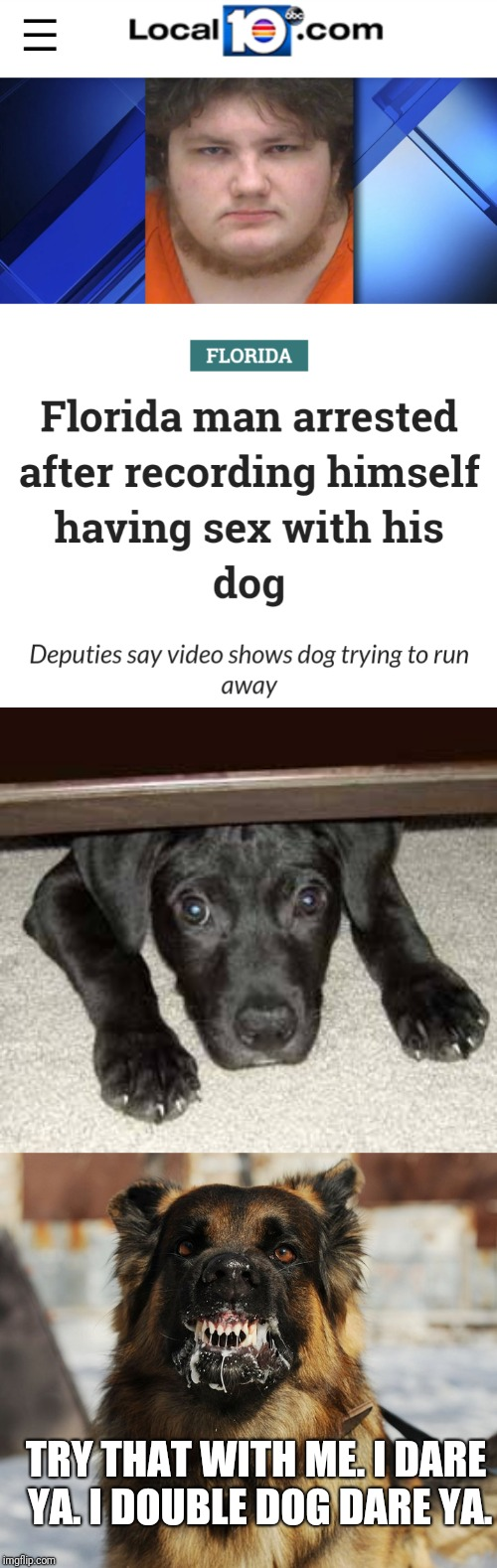 """Dog dare"" Florida Man Week (March 3-10, a Claybourne and Triumph_9 event) 