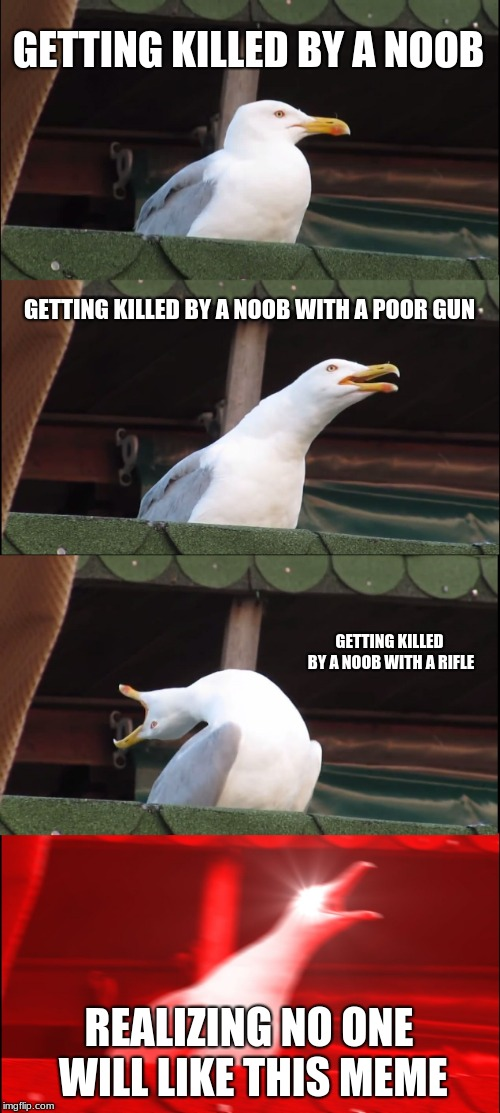 Inhaling Seagull Meme | GETTING KILLED BY A NOOB GETTING KILLED BY A NOOB WITH A POOR GUN GETTING KILLED BY A NOOB WITH A RIFLE REALIZING NO ONE WILL LIKE THIS MEME | image tagged in memes,inhaling seagull,dumb | made w/ Imgflip meme maker
