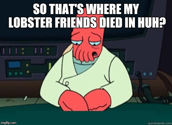 Sad Zoidberg | SO THAT'S WHERE MY LOBSTER FRIENDS DIED IN HUH? | image tagged in sad zoidberg | made w/ Imgflip meme maker