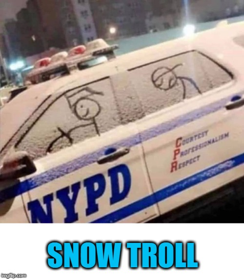 SNOW TROLL | image tagged in police,nypd,snow,troll | made w/ Imgflip meme maker