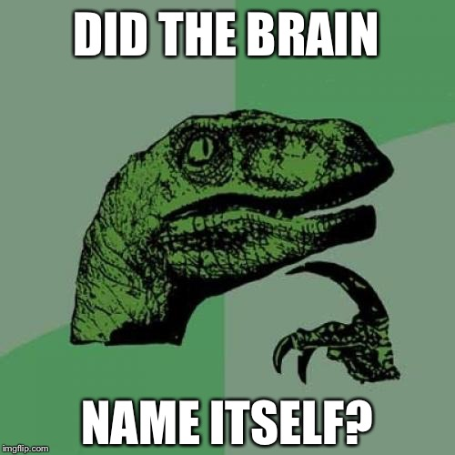 Good question... | DID THE BRAIN NAME ITSELF? | image tagged in memes,philosoraptor | made w/ Imgflip meme maker