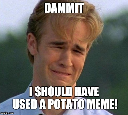 1990s First World Problems Meme | DAMMIT I SHOULD HAVE USED A POTATO MEME! | image tagged in memes,1990s first world problems | made w/ Imgflip meme maker
