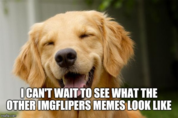 Happy Dog | I CAN'T WAIT TO SEE WHAT THE OTHER IMGFLIPERS MEMES LOOK LIKE | image tagged in happy dog | made w/ Imgflip meme maker