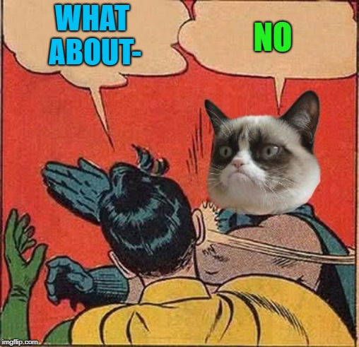 Grumpy Cat Slapping Robin | WHAT ABOUT- NO | image tagged in grumpy cat slapping robin | made w/ Imgflip meme maker