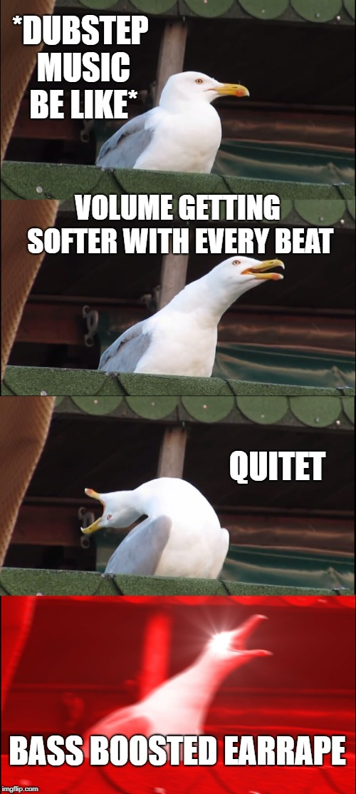 Inhaling Seagull Meme - Imgflip