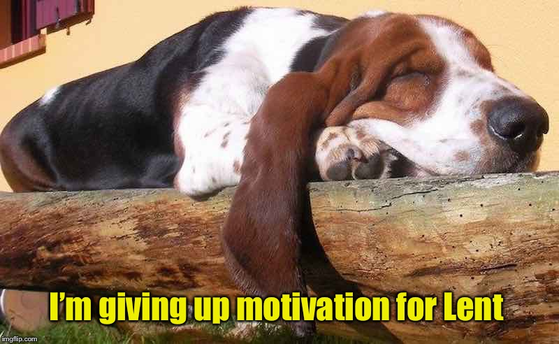 I'm giving up motivation for Lent | image tagged in motivation,lent,basset hound,funny,lazy dog | made w/ Imgflip meme maker