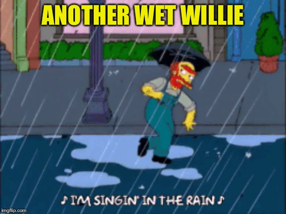 ANOTHER WET WILLIE | made w/ Imgflip meme maker