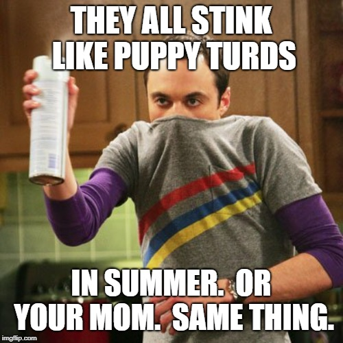 Xbots Stink | THEY ALL STINK LIKE PUPPY TURDS IN SUMMER.  OR YOUR MOM.  SAME THING. | image tagged in xbots stink | made w/ Imgflip meme maker