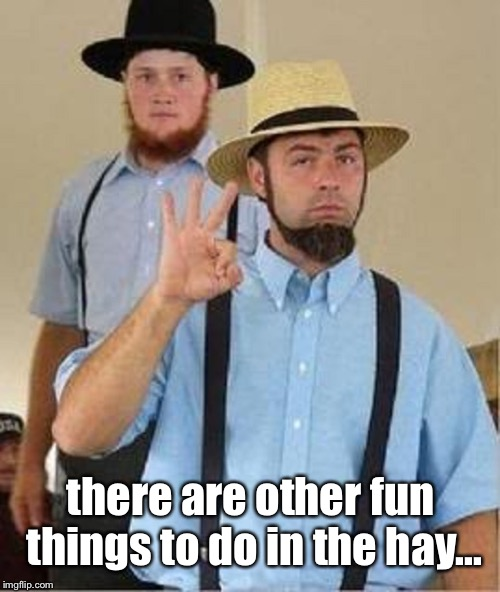 Amish Approved | there are other fun things to do in the hay... | image tagged in amish approved | made w/ Imgflip meme maker
