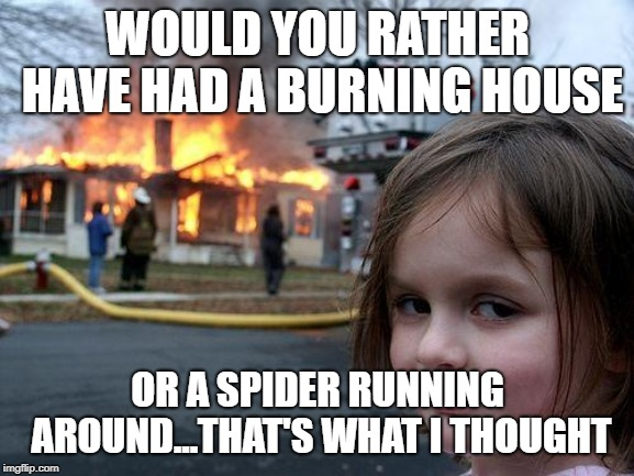 Disaster Girl Meme | WOULD YOU RATHER HAVE HAD A BURNING HOUSE OR A SPIDER RUNNING AROUND...THAT'S WHAT I THOUGHT | image tagged in memes,disaster girl | made w/ Imgflip meme maker