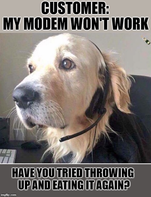 dog support | CUSTOMER: MY MODEM WON'T WORK HAVE YOU TRIED THROWING UP AND EATING IT AGAIN? | image tagged in dog,support | made w/ Imgflip meme maker