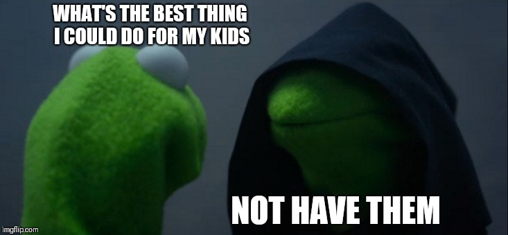 Evil Kermit Meme | WHAT'S THE BEST THING I COULD DO FOR MY KIDS NOT HAVE THEM | image tagged in memes,evil kermit | made w/ Imgflip meme maker