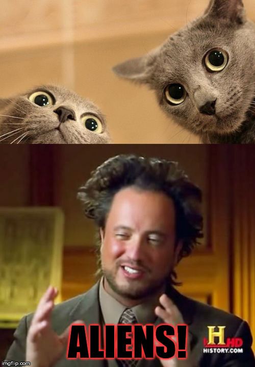 We have to wonder if... | ALIENS! | image tagged in memes,ancient aliens,funny,cats,aliens | made w/ Imgflip meme maker