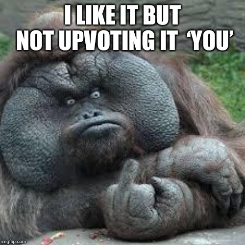 mad monkey | I LIKE IT BUT NOT UPVOTING IT  'YOU' | image tagged in mad monkey | made w/ Imgflip meme maker