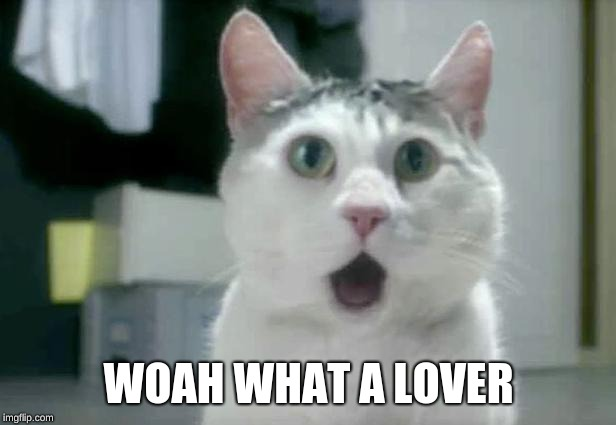 OMG Cat Meme | WOAH WHAT A LOVER | image tagged in memes,omg cat | made w/ Imgflip meme maker
