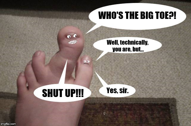 WHO'S THE BIG TOE?! Well, technically, you are, but... SHUT UP!!! Yes, sir. | image tagged in funny,memes,feet,toes | made w/ Imgflip meme maker