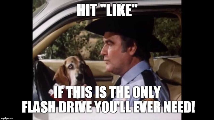 "Flash Drive | HIT ""LIKE"" IF THIS IS THE ONLY FLASH DRIVE YOU'LL EVER NEED! 
