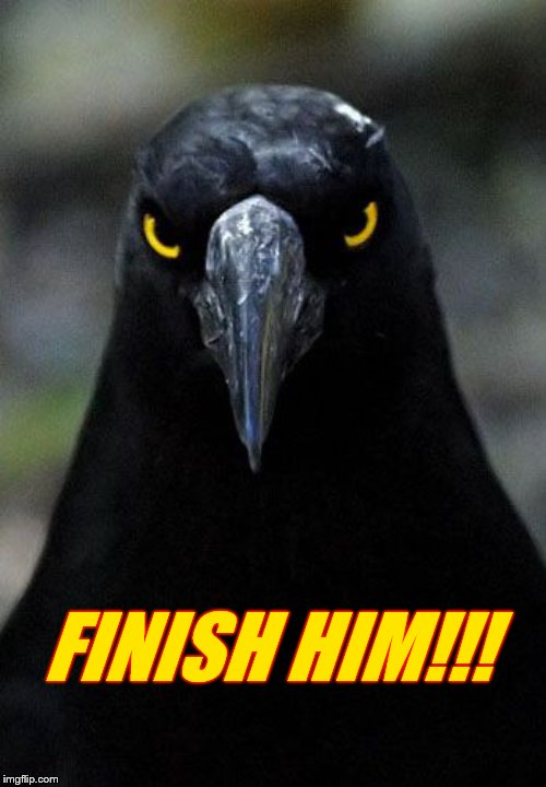 FINISH HIM!!! | made w/ Imgflip meme maker