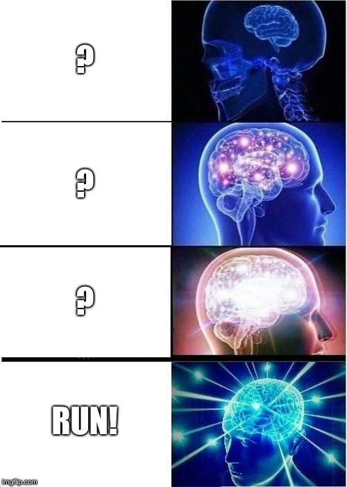 Expanding Brain Meme | ? ? ? RUN! | image tagged in memes,expanding brain | made w/ Imgflip meme maker