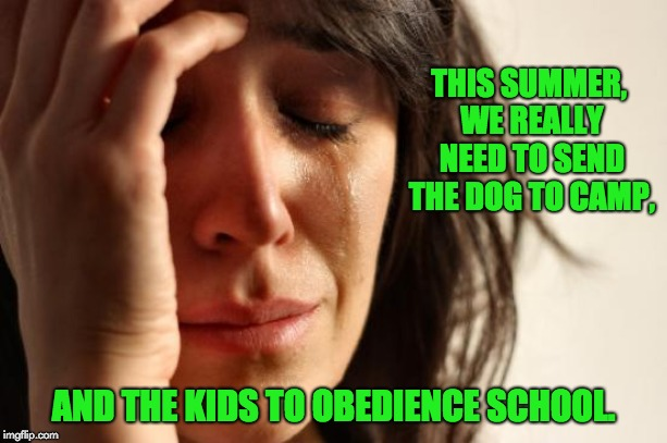 First World Problems Meme | THIS SUMMER, WE REALLY NEED TO SEND THE DOG TO CAMP, AND THE KIDS TO OBEDIENCE SCHOOL. | image tagged in memes,first world problems | made w/ Imgflip meme maker