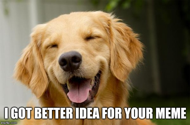 Happy Dog | I GOT BETTER IDEA FOR YOUR MEME | image tagged in happy dog | made w/ Imgflip meme maker