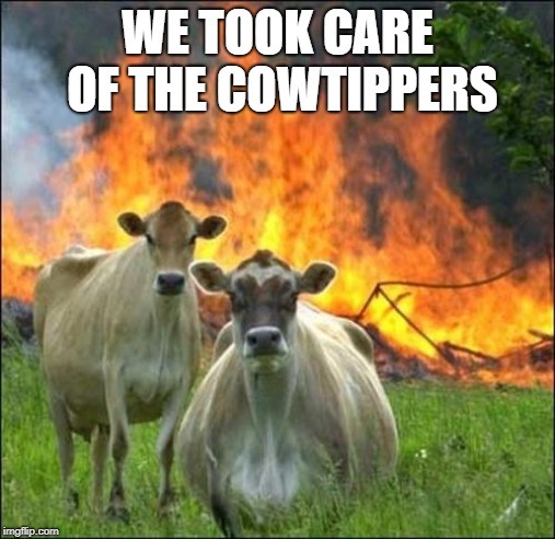 Evil Cows Meme | WE TOOK CARE OF THE COWTIPPERS | image tagged in memes,evil cows | made w/ Imgflip meme maker