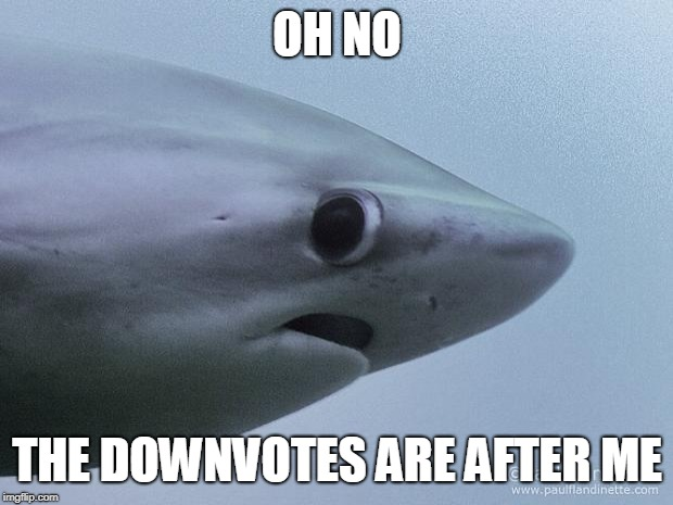 Awkward Shark | OH NO THE DOWNVOTES ARE AFTER ME | image tagged in awkward shark | made w/ Imgflip meme maker