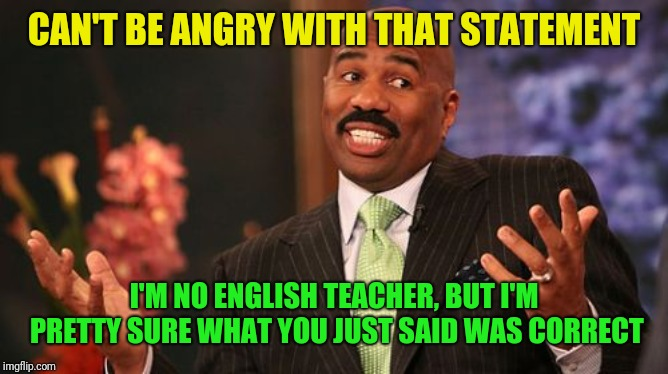 Steve Harvey Meme | CAN'T BE ANGRY WITH THAT STATEMENT I'M NO ENGLISH TEACHER, BUT I'M PRETTY SURE WHAT YOU JUST SAID WAS CORRECT | image tagged in memes,steve harvey | made w/ Imgflip meme maker