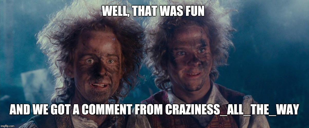 Fireworks | WELL, THAT WAS FUN AND WE GOT A COMMENT FROM CRAZINESS_ALL_THE_WAY | image tagged in fireworks | made w/ Imgflip meme maker