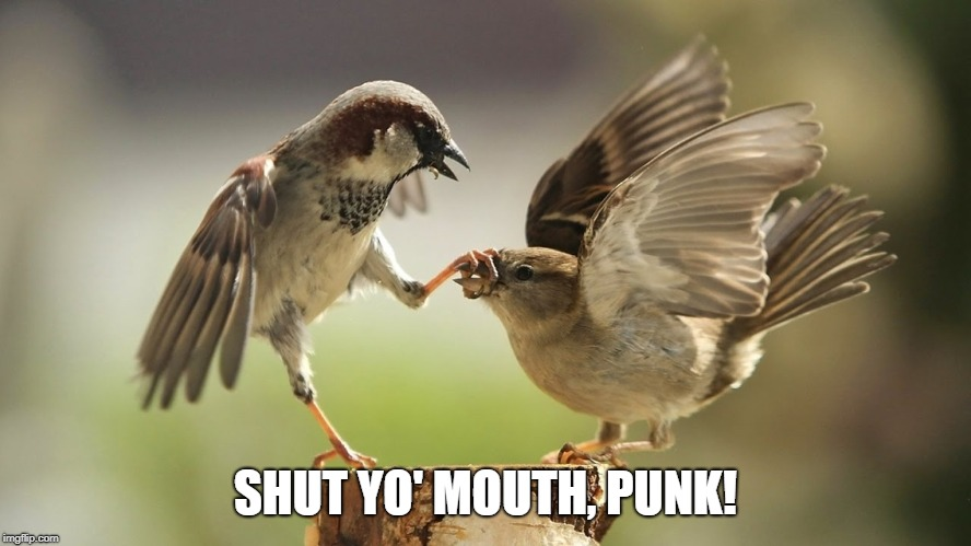 SHUT YO' MOUTH, PUNK! | made w/ Imgflip meme maker
