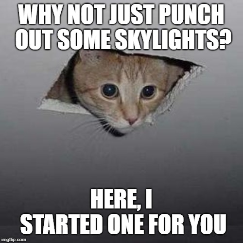 Ceiling Cat Meme | WHY NOT JUST PUNCH OUT SOME SKYLIGHTS? HERE, I STARTED ONE FOR YOU | image tagged in memes,ceiling cat | made w/ Imgflip meme maker