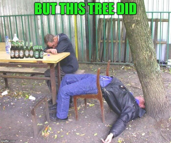 Drunk russian | BUT THIS TREE DID | image tagged in drunk russian | made w/ Imgflip meme maker