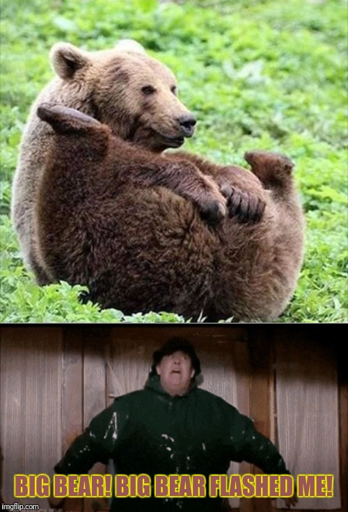 The Great Outdoors Meme | BIG BEAR! BIG BEAR FLASHED ME! | image tagged in john candy,big,bear,flash,memes | made w/ Imgflip meme maker