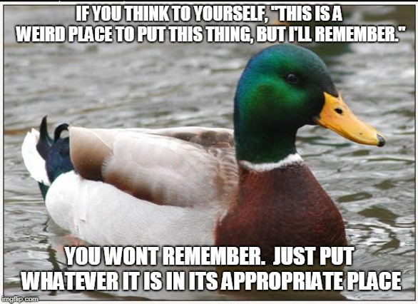 "Actual Advice Mallard Meme | IF YOU THINK TO YOURSELF, ""THIS IS A WEIRD PLACE TO PUT THIS THING, BUT I'LL REMEMBER."" YOU WONT REMEMBER.  JUST PUT WHATEVER IT IS IN ITS A 