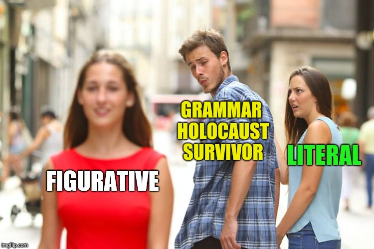 Distracted Boyfriend Meme | FIGURATIVE GRAMMAR HOLOCAUST SURVIVOR LITERAL | image tagged in memes,distracted boyfriend | made w/ Imgflip meme maker